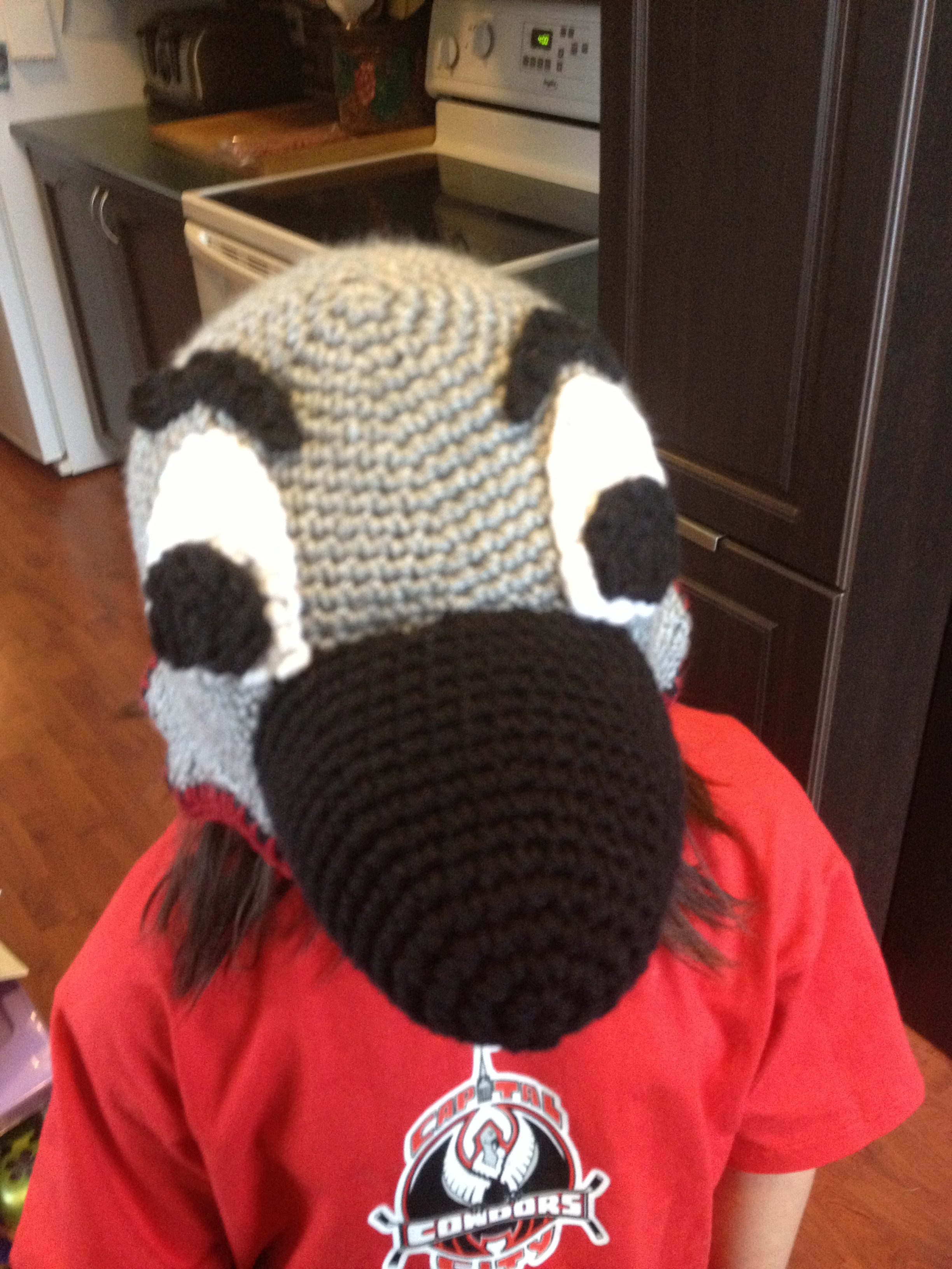 Condors Crocheted Hat front view